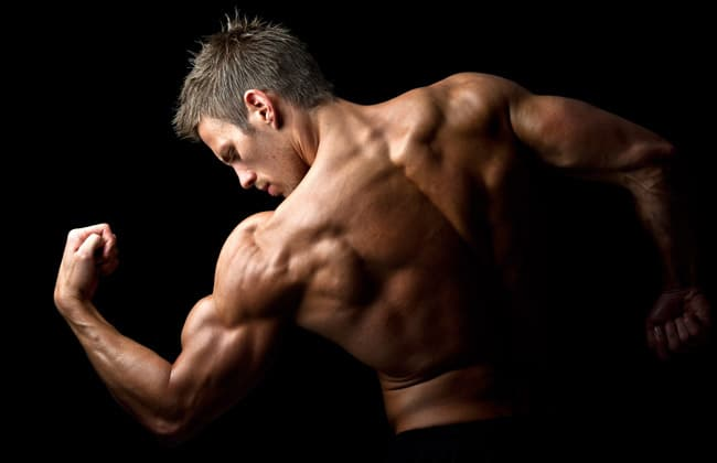 Anabolic Steroid Alternatives that Really Work
